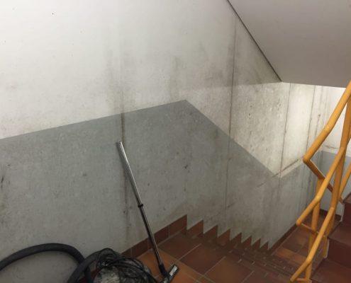 Schimmelschaden, Schimmelsanierung - Rausch - Reparatur und Sanierung